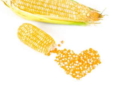 Fresh Corncobs or corn ears isolated on white background Stockfoto