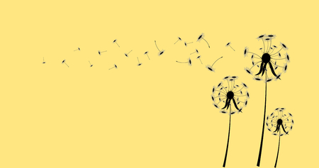 dandelion on a wind loses the integrity,vector illustrator.