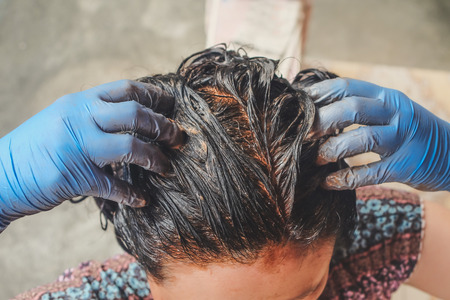 Home made hair Treatment with mud to resolve with gray hair. Banco de Imagens