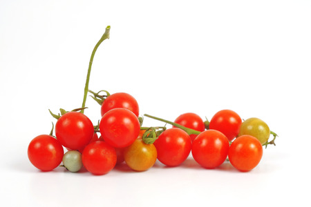 Small Tomato on white background.Food concept.