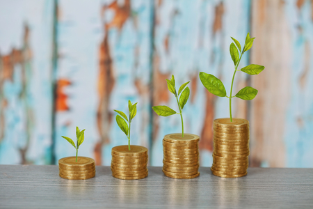 Tree growing on coins stack ,concept of investment growth. Stock fotó