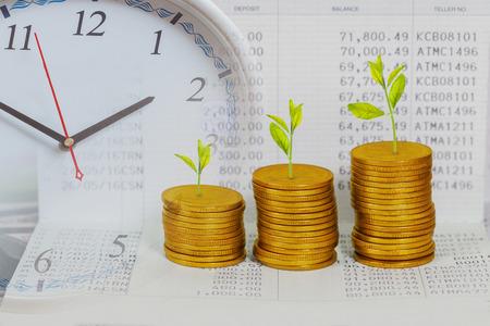 Boom groeit op munten stapel, concept van investeringsgroei.