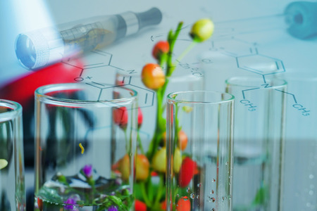 Small plants in test tube for biotechnology medicine research. Banque d'images - 121841254