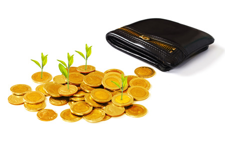 Grow small plants with gold coins stacked with pocket. Standard-Bild