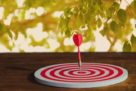 Arrow on dart board paint light of still life .