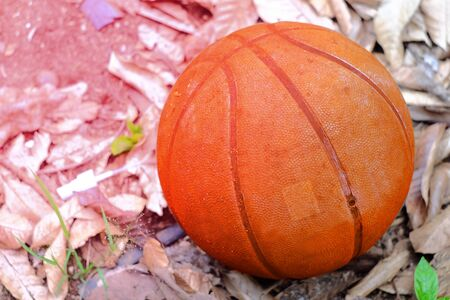 Old basketball on dry leaf ground. Stock Photo