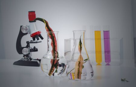 Test tubes , pharmacy and medical research laboratory.