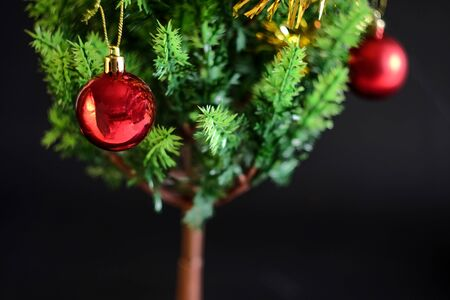 Red ball christmas decoration on green pine tree,Christmas background.