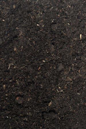 soil conservation: Black soil texture  Stock Photo