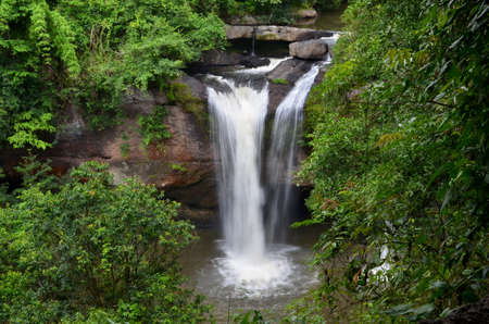 waterscape: Deep Forest Waterfall