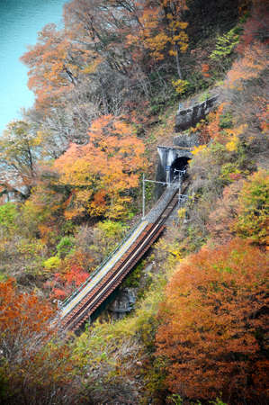 Railway in the beautiful autumnal forest photo