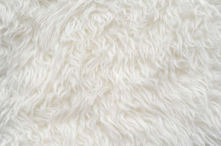 luxurious: Luxurious wool texture from a  sheepskin rug Stock Photo