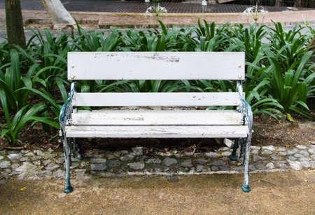 chair in beautiful garden photo