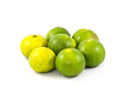 citrous: Limes or lemon Green on a white background.