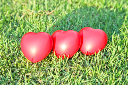 radiosity: Red heart on green grass background Stock Photo