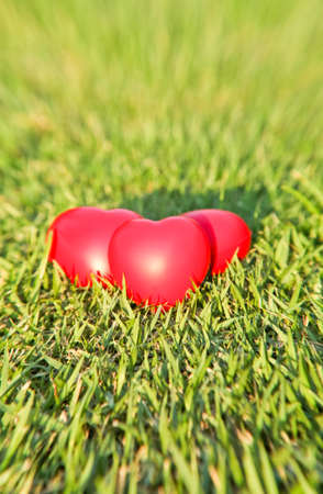 Red heart on green grass background Stock Photo