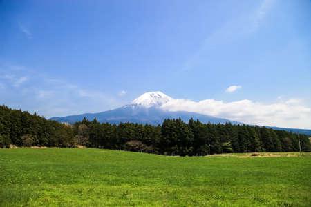 Beautiful Mount Fuji, japan., Mount Fuji with green field and blue sky.