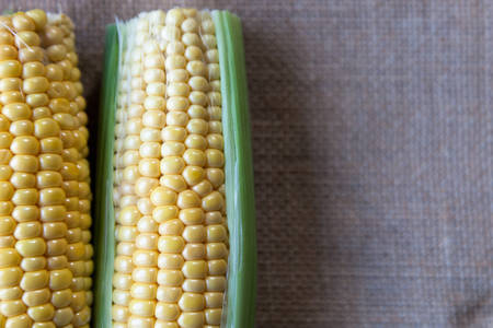 Fresh corn fruits with green leaves isolated .,An ear of corn isolated.