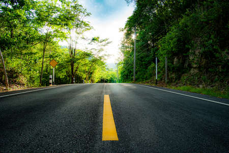 Paved road , Lush spring green trees and vegetation make for a beautiful scene along a road