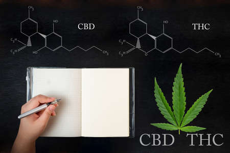A womans hand holding a pen with a notebook ,CBD formula. Hemp industry, Growing Marijuana, despancery business. CBD and THC elements in Cannabis, 版權商用圖片
