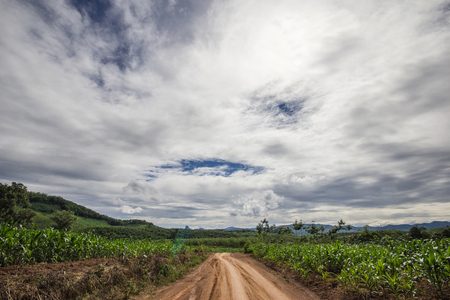dirt: Dirt road and sky