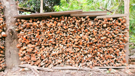 fireplace: Natural wooden background. Firewood stacked and prepared for cooking and winter.