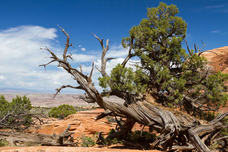 Arches national park, Arches national park Stockfoto