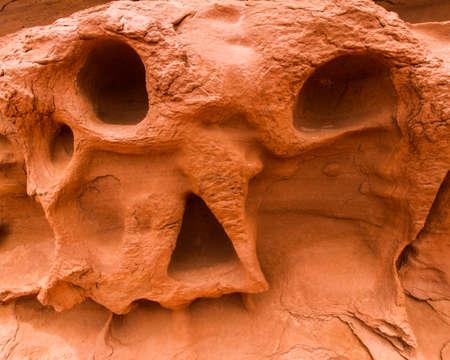 skull on sand at canyonlands national park