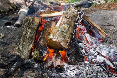 firewood burning to make barbecue