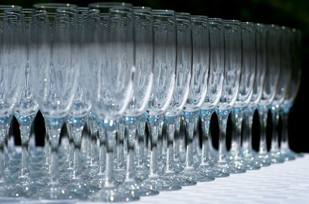 pellucid: Close up of rows of champagne glasses