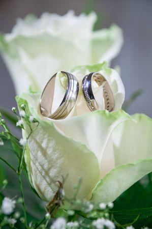 Set van huwelijks ringen in roos