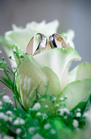 Set of wedding rings in rose