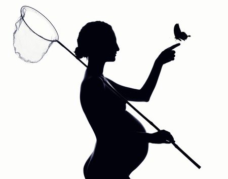 Beautiful silhouette of pregnant woman with a butterfly net photo