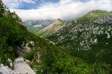 national plant: Scenic mountain landscape. Paklenica National Park in Croatia