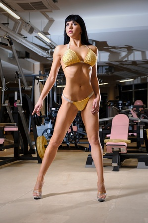 Beautiful athletic young woman posing in the fitness club Stock Photo - 17316400