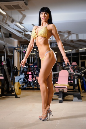 Beautiful athletic young woman posing in the fitness club Stock Photo - 17316399