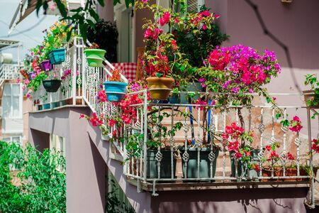 Flowers on balcony Photo taken in Alanya, most popular Turkish resort
