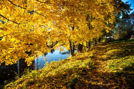 sigulda: Picturesque autumn landscape  Sigulda, Latvia Stock Photo