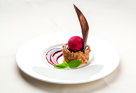 Delicious chocolate dessert with cherry ice-cream on a plate   photo