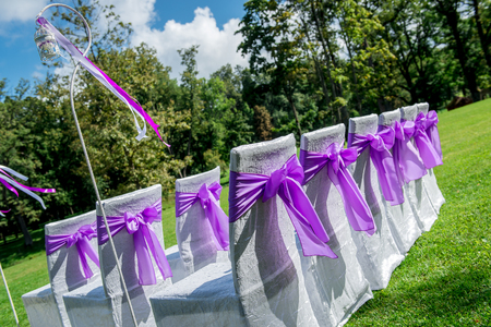 wedding chairs: White wedding chairs with purple bows outdoors