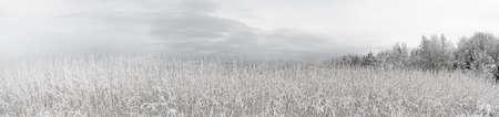 Panorama de invierno photo