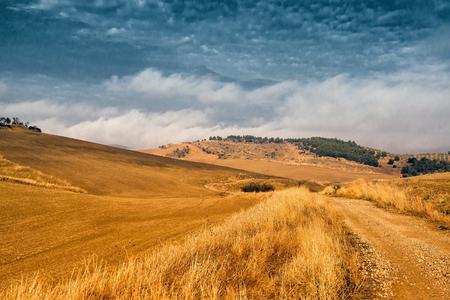 non cultivated: Winter landscape Stock Photo