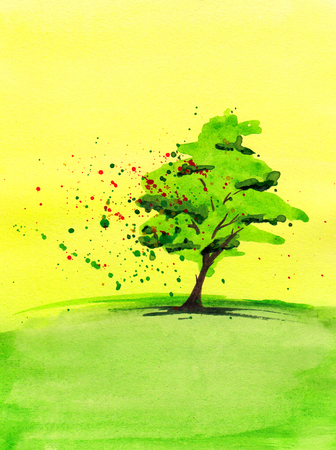 Watercolor painting of green tree  photo