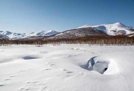 snowbanks: Nalychevo Nature Park, Hot Spring Valley   Kamchatka, Russia