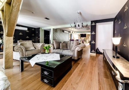 Interior of fashionable living room Stock Photo - 29274507