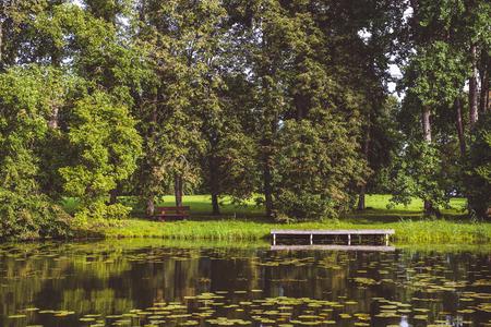 Picturesque summer landscape Stock Photo