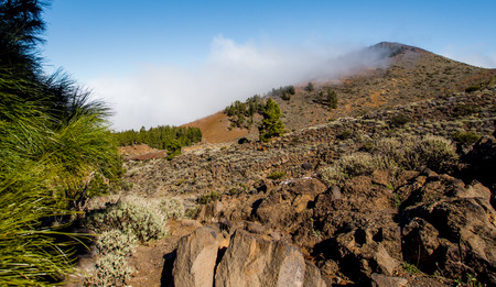 volcano slope: Northern slope of volcano Teide. Tenerife, Canary Islands. Spain