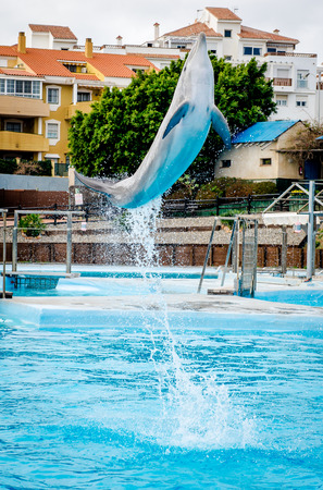 dolphin jumping: A dolphin in a show in a dolphinarium Stock Photo
