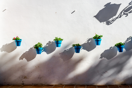 whitewashed: Blue flower pots on a whitewashed wall in Mijas. Andalusian white village. Costa del Sol. Spain