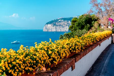 amalfi: Flowers in Piano di Sorrento. Amalfi Coast. Italy Stock Photo